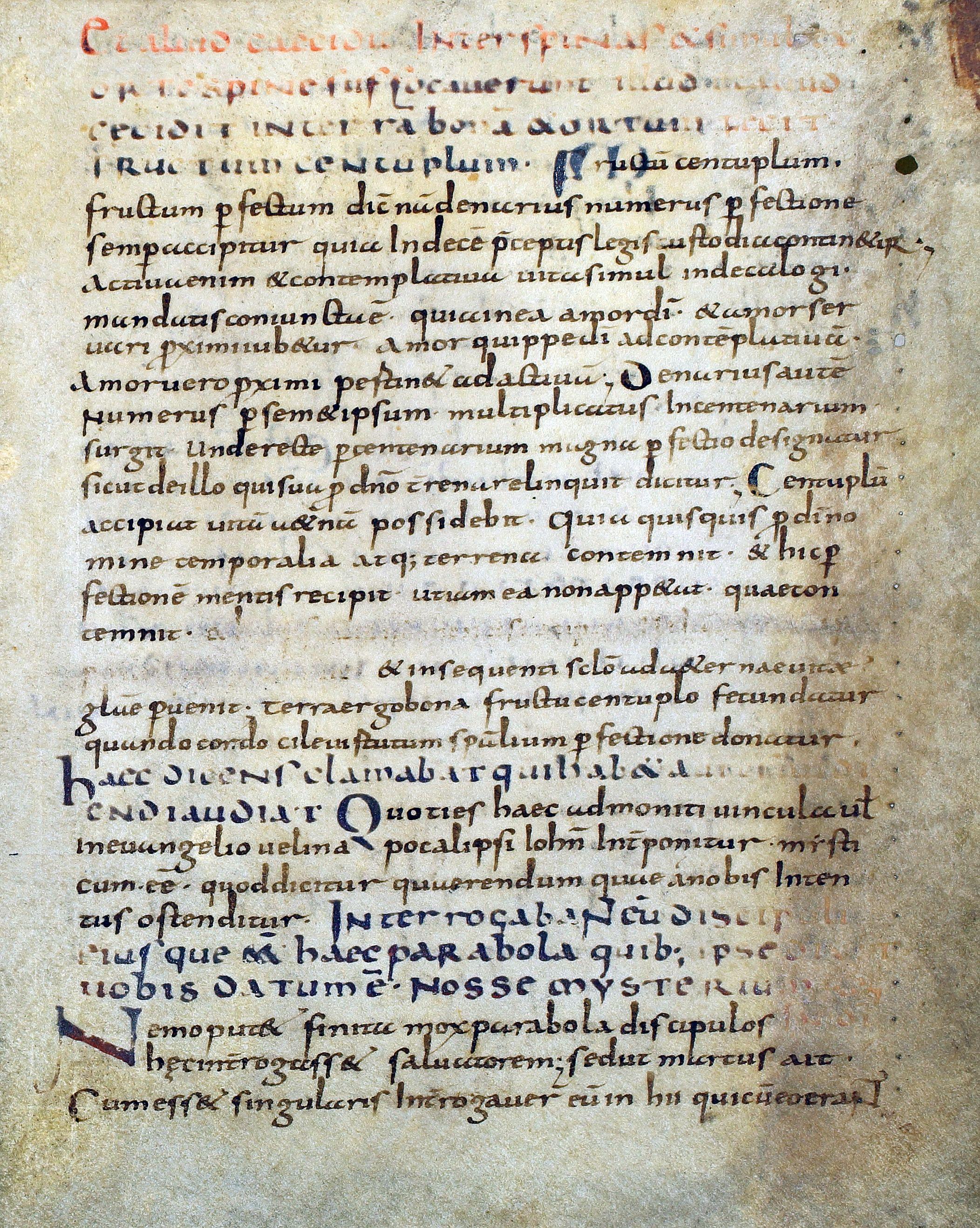 Abb. 6) Fragment des Lukas-Kommentars von Beda Venerabilis, 1. Viertel des 9. Jahrhunderts (BVerwG, 4+ C 6463, Spiegelbeklebung auf dem HD, Ausschnitt)
